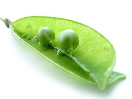 2 peas in a pod!