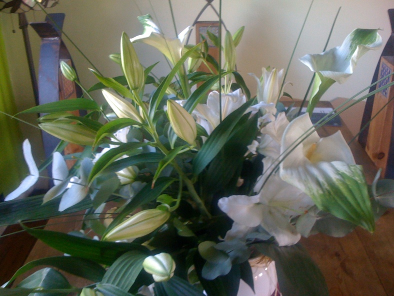 My favourite flowers are lilies x
