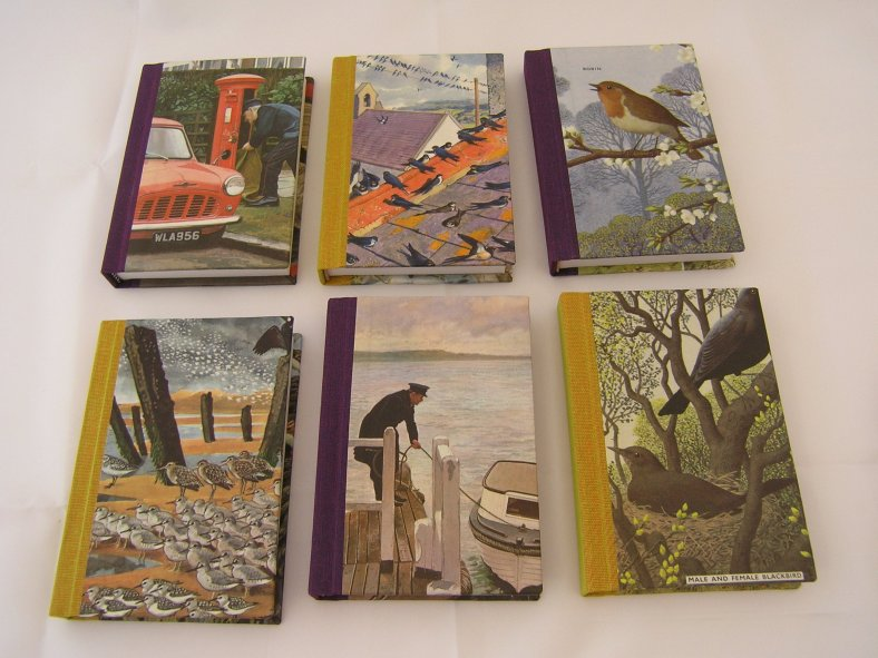 Heather's small notebooks, with old (damaged, so no harm done!) Ladybird books