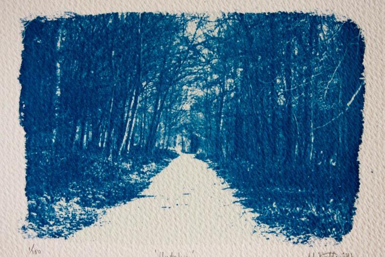 Untaken Cyanotype print by Moira Fuller