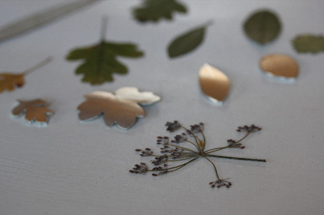Botanical images ready to turn into beautiful jewellery