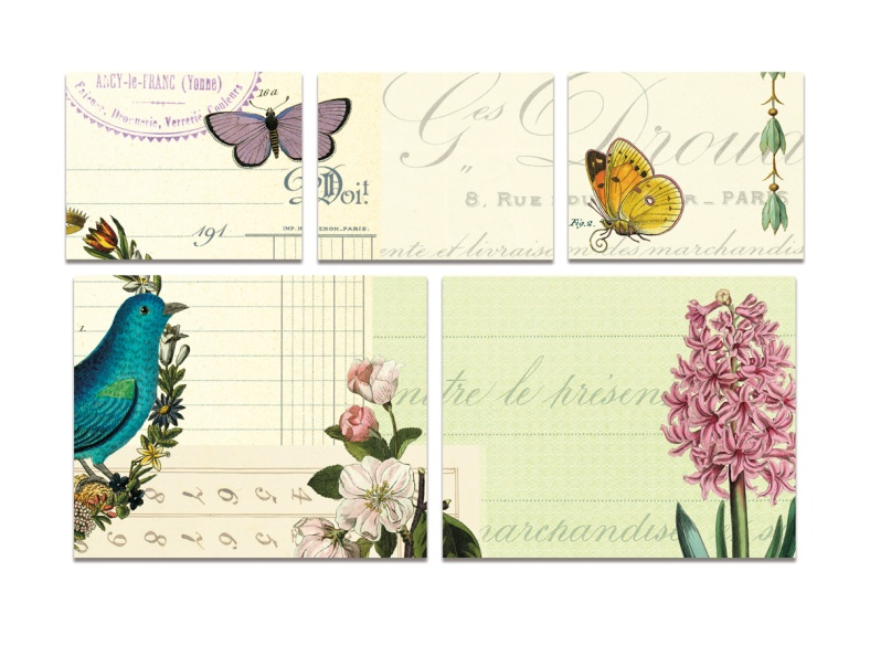 Flora and Fauna sticky notes