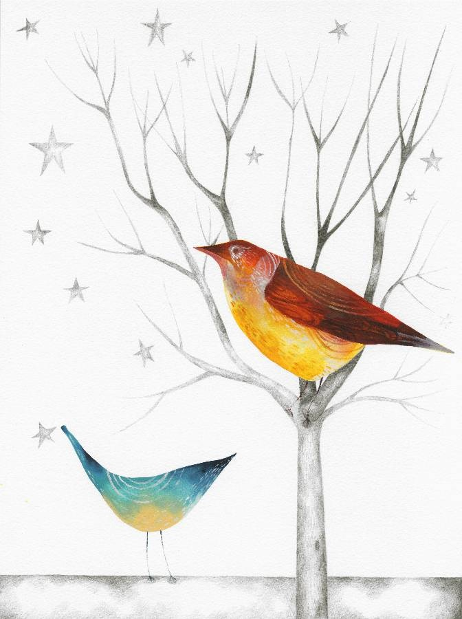 Star Birds - Julia Ogden