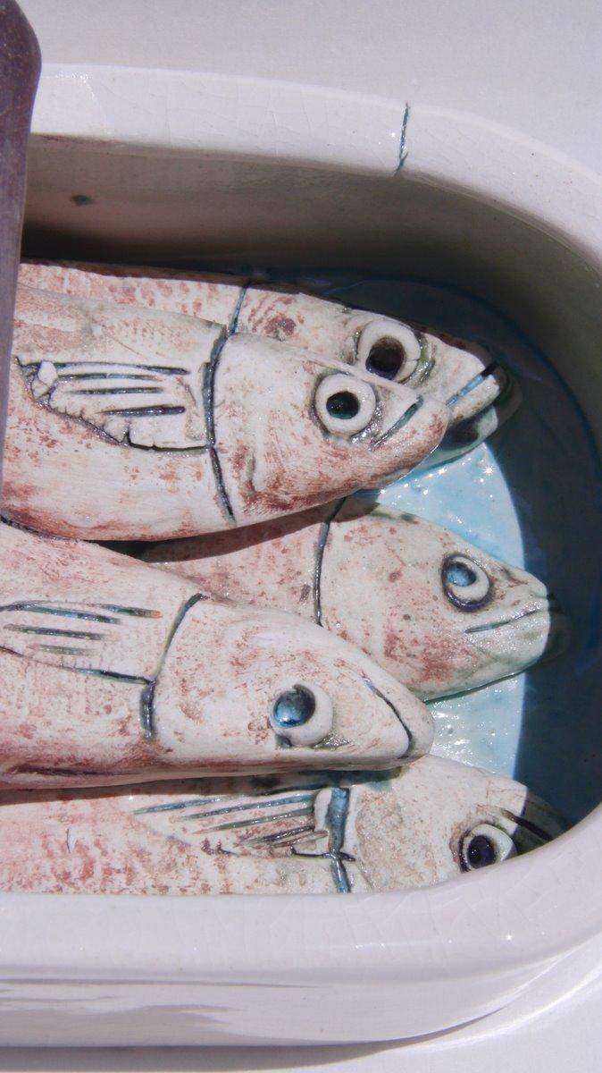 Sardine Tin close up