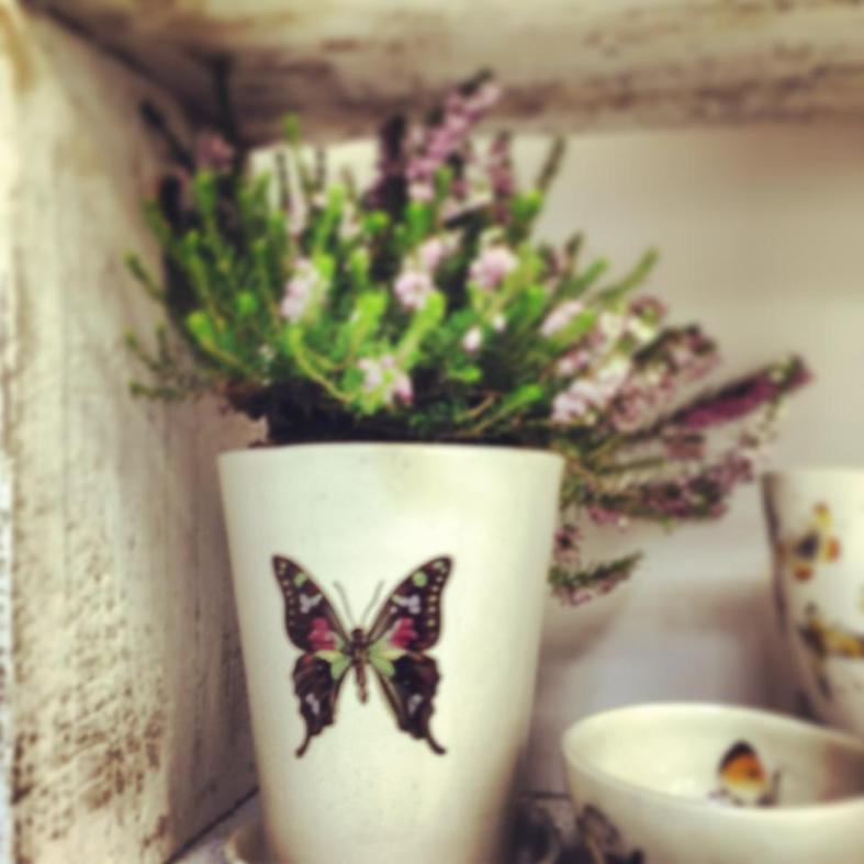 Selection of Kim's ceramics