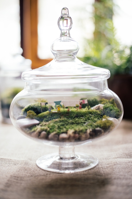 Large terrarium showing a washing line scene