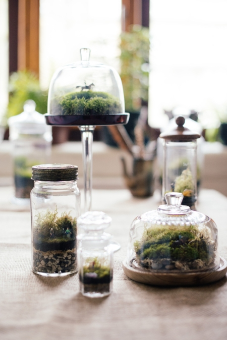Terrariums ... enchanting miniature worlds
