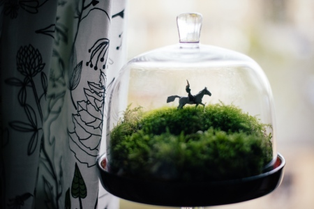Large terrarium featuring a horse and rider