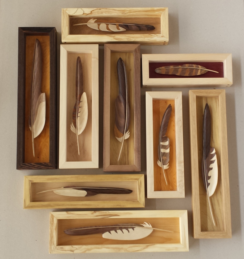 Various feathers
